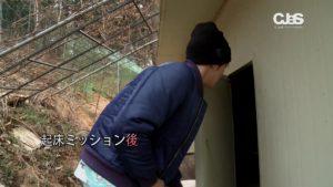 JYJ_japan.mp4_006534373