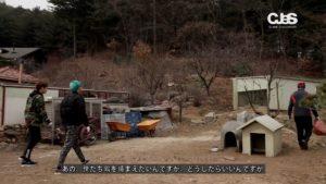 JYJ_japan.mp4_002998852